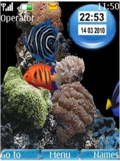 Aquarium Nokia  Mobile Theme