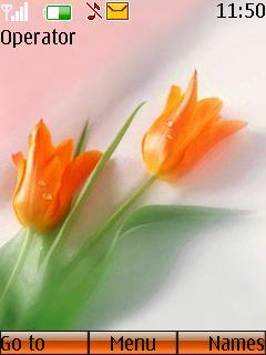 Tulips Mobile Theme