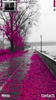 Pink Tree  Mobile Theme