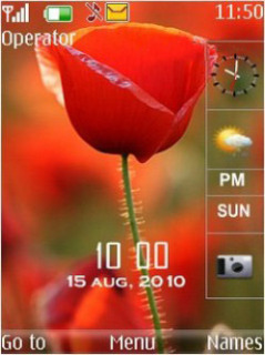 Floral With Tone Nokia S40 Theme Mobile Theme