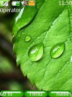 Wet Leaf Mobile Theme