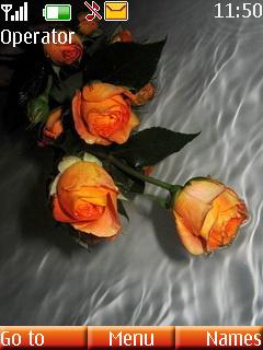 Orange Roses Mobile Theme