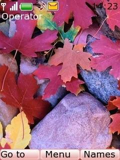 Autumn Leaves Mobile Theme
