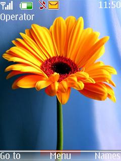 Yellow Flower Mobile Theme