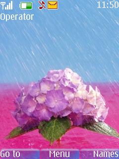 Raining On Flower Mobile Theme