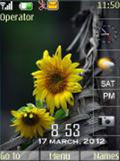 Flowers Dual Clock Mobile Theme
