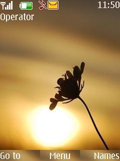 Sunflower Mobile Theme