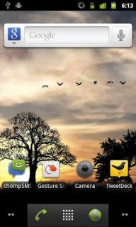 Birds Sun Rise Android Theme Mobile Theme