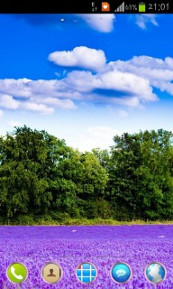 Purple Lavender Field For Android Theme Mobile Theme