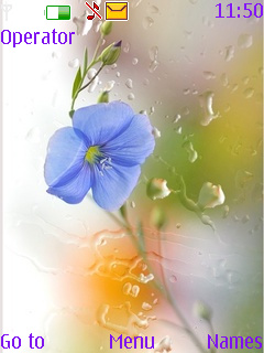 Blue Flower Wet Screen S40 Theme Mobile Theme