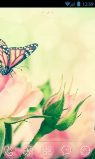 Pink Flower & Butterfly Android Theme Mobile Theme