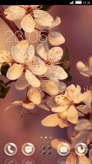 Cherry Blossom Flowers Android Theme Mobile Theme
