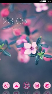 Pink Beauty Flowers Android Theme Mobile Theme