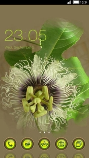 Green Curly Flower Free Android Theme Mobile Theme