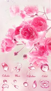 Rose Water Drops Pink Love Android Theme Mobile Theme