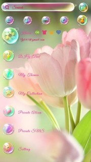 Pink Lovely Natural Flowers For Android Theme Mobile Theme