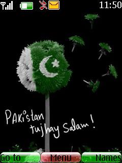Pakistan 14 August Nokia Theme Mobile Theme