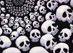 Skulls Mobile Theme