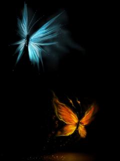 Butter Fly Effect  Mobile Wallpaper