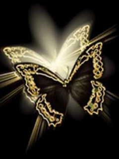 Butterflyo Mobile Wallpaper