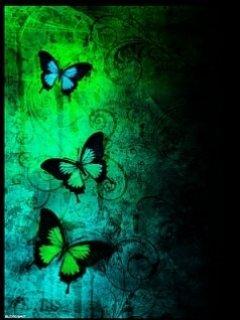 Butterfly 654 Mobile Wallpaper