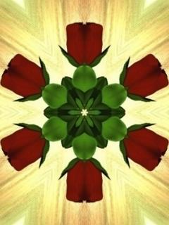 Rose Bud Mobile Wallpaper