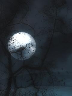 Darkness Mobile Wallpaper