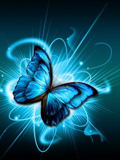 Blue Butterfliy Mobile Wallpaper