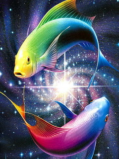 Color Fish  Mobile Wallpaper