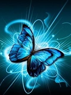 Butterfly2 Mobile Wallpaper
