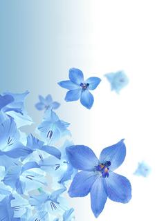 Floral Blue Mobile Wallpaper