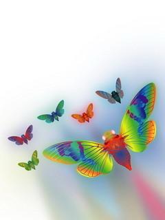 Fluturi Curcubeu Mobile Wallpaper