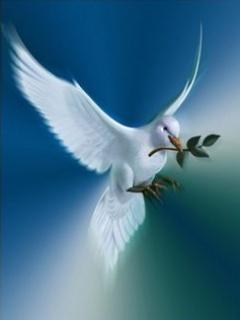 Dove Of Peace Mobile Wallpaper