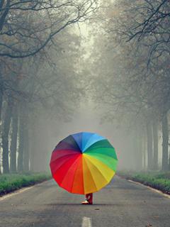 Color Umbrella Mobile Wallpaper