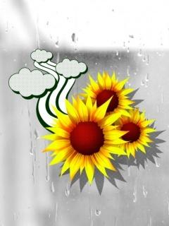 Sunflower Mobile Wallpaper