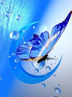 Blue Butterfly With Moon Mobile Wallpaper