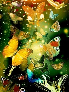 Colors Butterfly Mobile Wallpaper