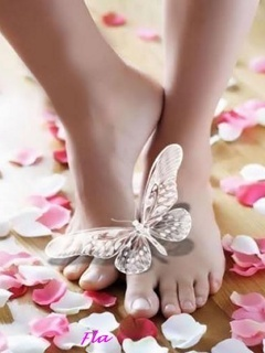Butterfly On Foots Mobile Wallpaper