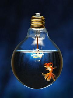 Fish Bulb Mobile Wallpaper