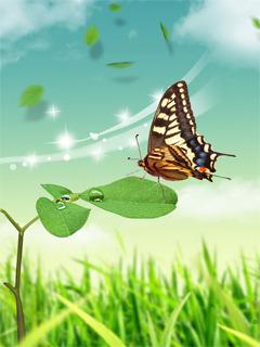 Butterfly Over Lefas Mobile Wallpaper