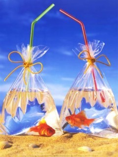Bags Of Fishes Mobile Wallpaper