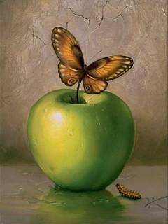 Unduh 800 Wallpaper Apple Butterfly HD Terbaik