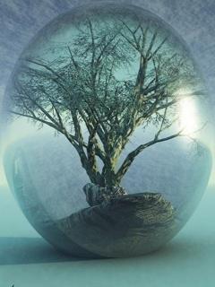 Inside Circle Tree Mobile Wallpaper