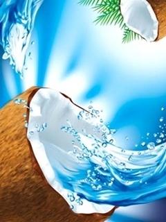 Coconuts Mobile Wallpaper