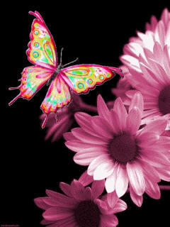 Butterfly Pink Flower Mobile Wallpaper