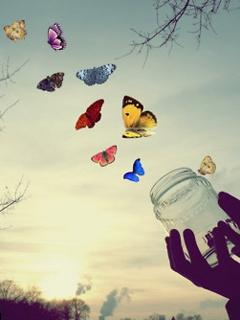 Fly Away In Sky Mobile Wallpaper