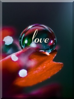 Love Bubble Mobile Wallpaper