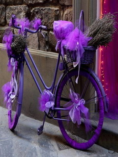 Bicycle Lavender Mobile Wallpaper
