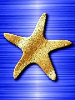 Starfish Mobile Wallpaper