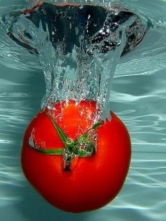 Tomato Mobile Wallpaper